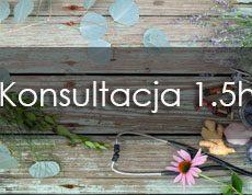 Konsultacja_1.5h mojasymbioza