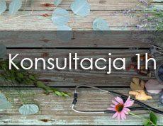 Konsultacja_1h mojasymbioza