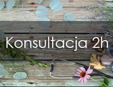 Konsultacja_2h mojasymbioza
